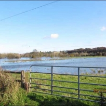 View of Slaney above Scarrawelsh bridge in full lake forming flood