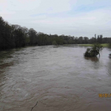 View upstream from bridge in Bunclody showing extensive flooding levels.