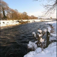 Winter 2010, downstream from Bunclody (3)