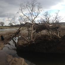 2013-flood-1